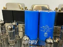 Tube Technology Unisys stereo valve amplifier MM phono stage serviced 2021